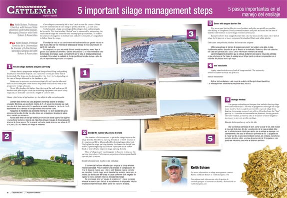Progressive Cattleman center spread silage