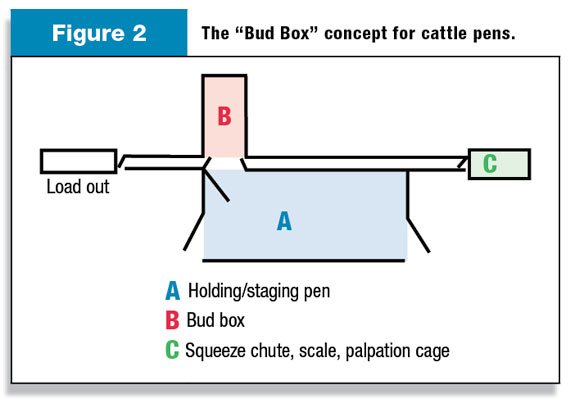 Figure 2: The Bud Box concept for cattle pens