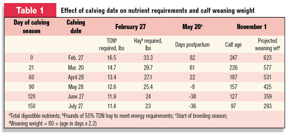 Effect of calving date on nutrient requirements and calf weaning weight