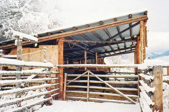 This calving barn provides a windbreak and shelter from the snow.