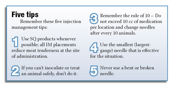 Figure 1: 0Five tips for vaccinations