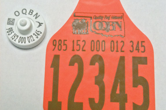 Oklahoma Quality Beef Network ear tag