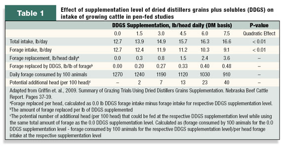effect of supplementation levels of DDGS on intake of growing cattle
