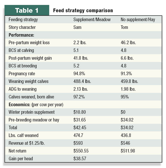 Table 1: Feed strategy comparison