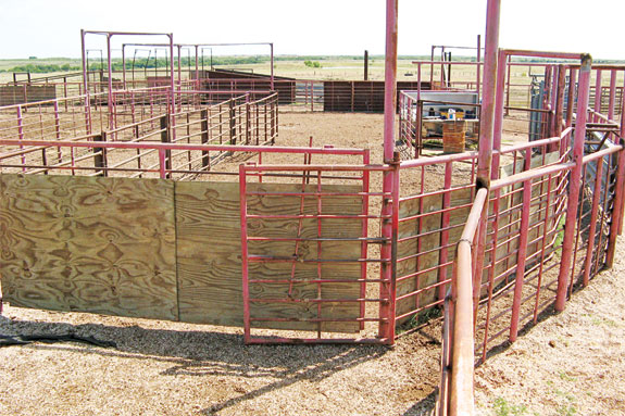 Pens for working cattle