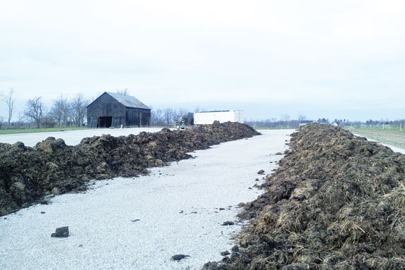 Composting pad at a feedlot