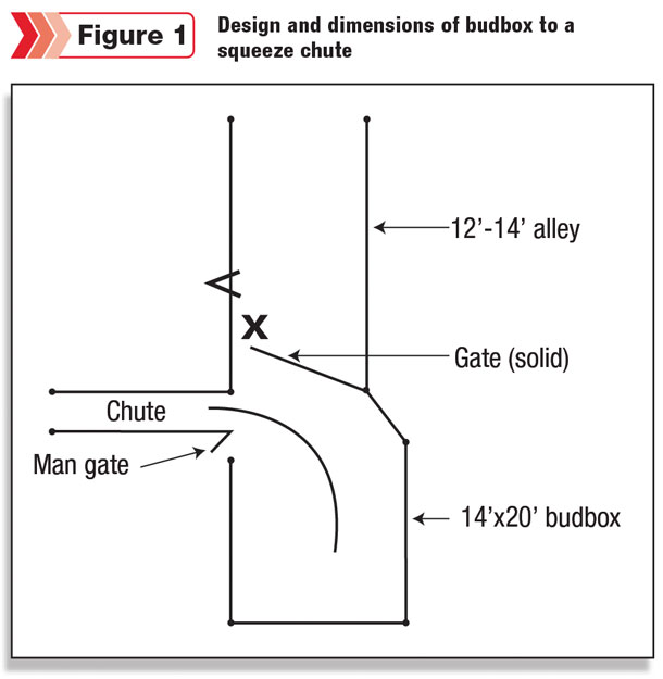 The Budbox Principles Design And Operation