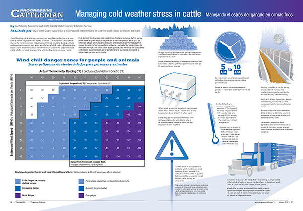 Managing cold weather stress in cattle