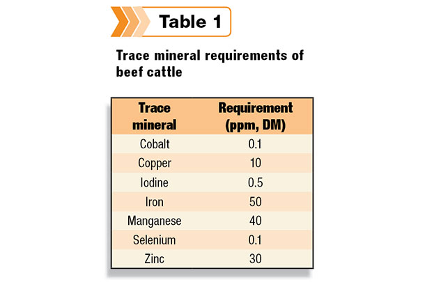 mineral requirements of animals and symptoms
