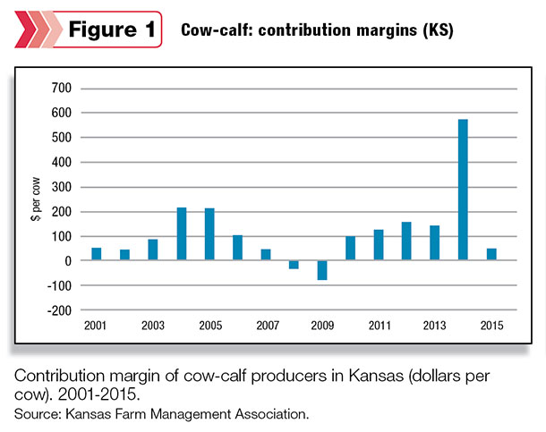 Cow-calf: contribution margins