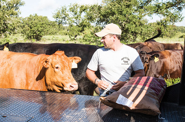 Josh Eilers feeds range cubes to cows