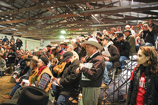 Rausch Herefords will host their 59th annual production sale in Feb.