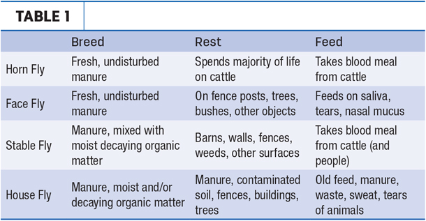 Types of flies table
