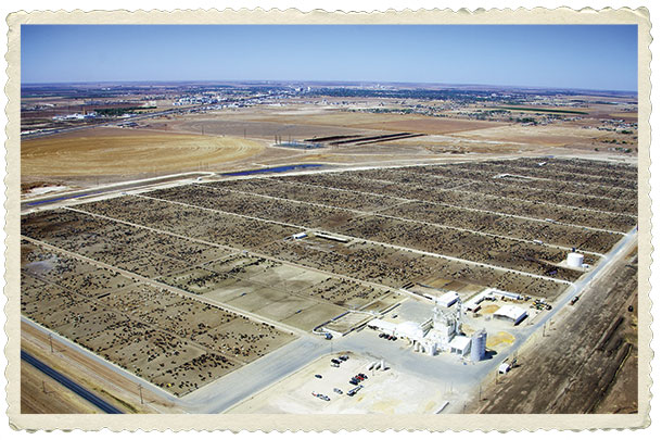 Southwest Feedyard, a 40,000 head operation in Hereford, Texas, owned by Cactus Feeders Inc.