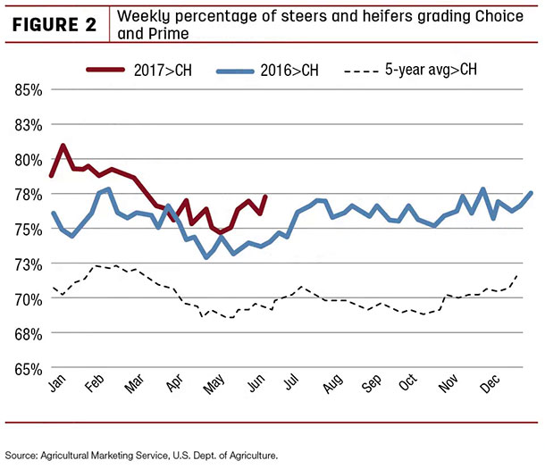 weekly percentage of steers and heifers grading Choice and Prime