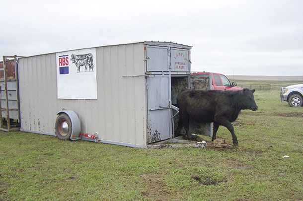 Portable Livestock Barns : A modern approach to i sheds and barns progressive