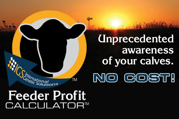 IGS Feeder Profit Calculator