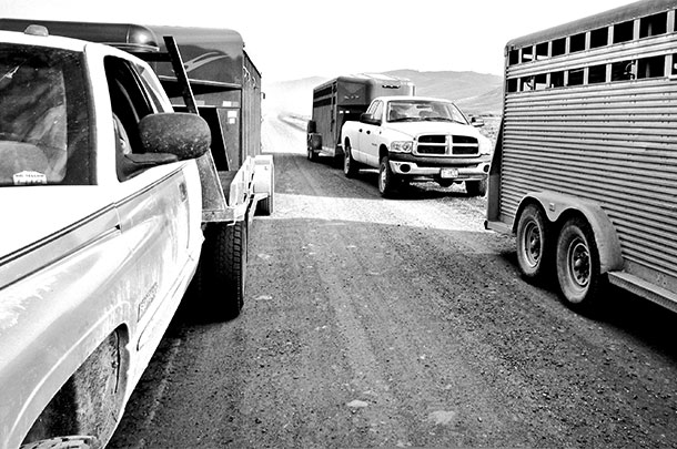 trailers and pickups