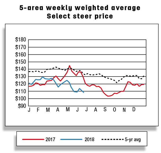 5 area weekly weighted average select steer price