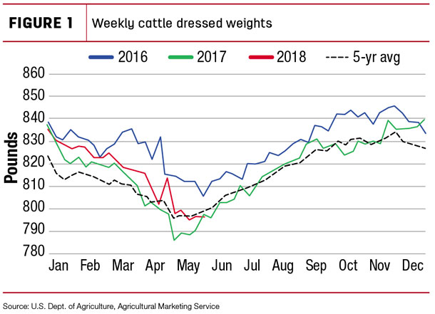 Weekly cattle dressed weights