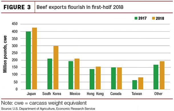 Beef exports flourish in first- half 2018