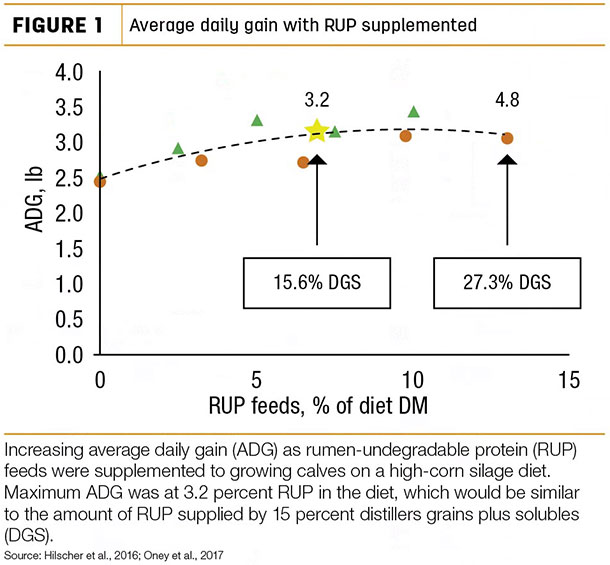 Average daily gain with RUP supplemented