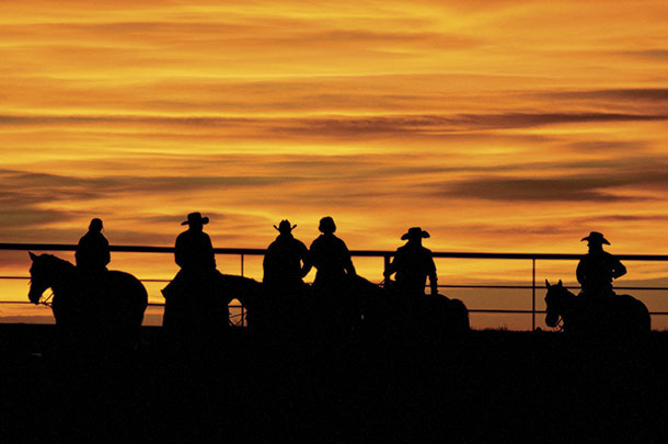 ranch hands silhouetted at sunset
