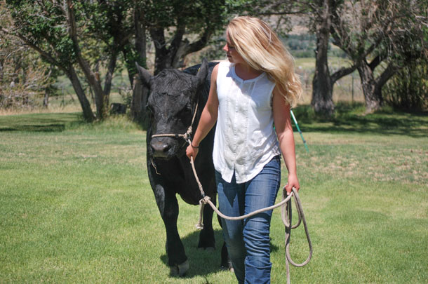 girl walking beef cow