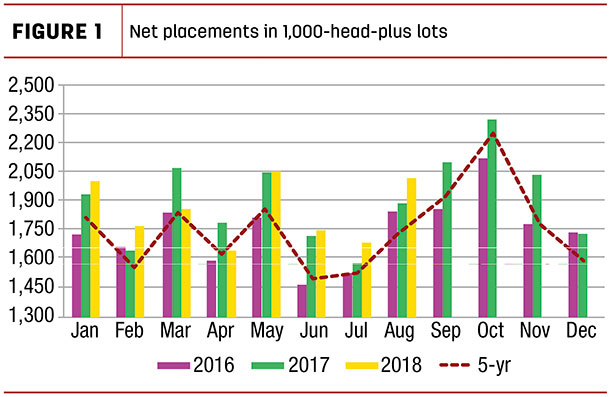 Net placements in 1,000 head plus lots