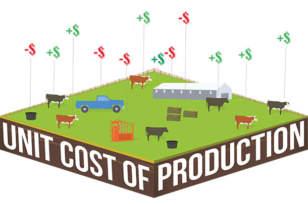 Unit cost of production