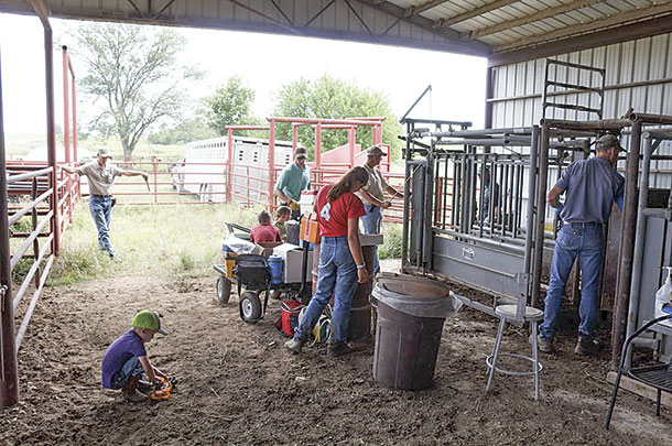 All family members are involved in the day-to-day operations of Judd Ranch