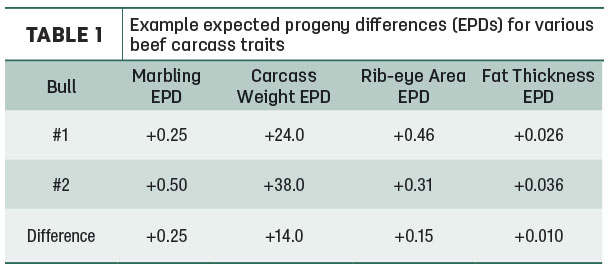 Example expected progeny differences for various beef carcass traits