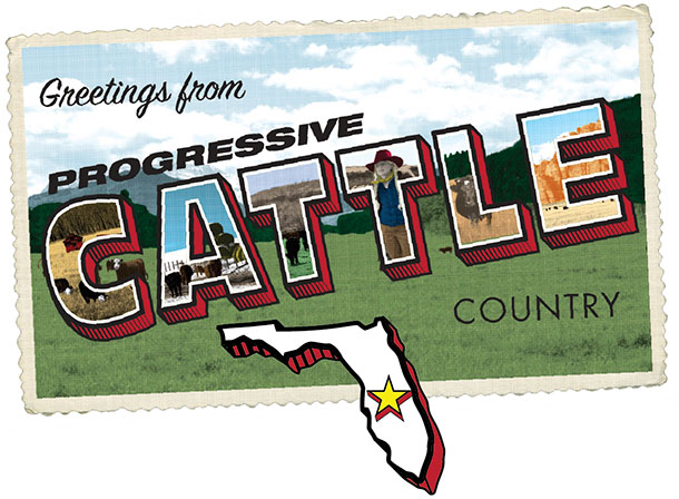 Progressive Cattle Florida
