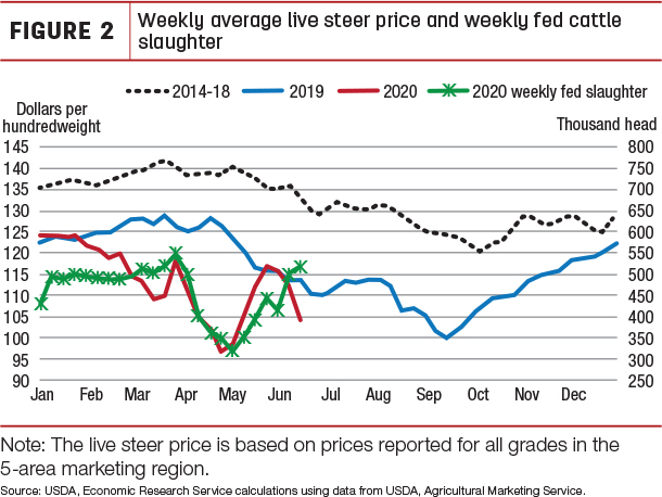 Weekly averge live steer price and weekly fed cattle slaughter