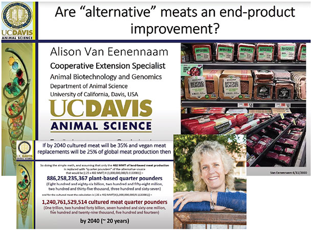 "Are ""alternative"" meats an end-product improvement?"